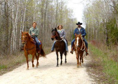 horsestrailgallery
